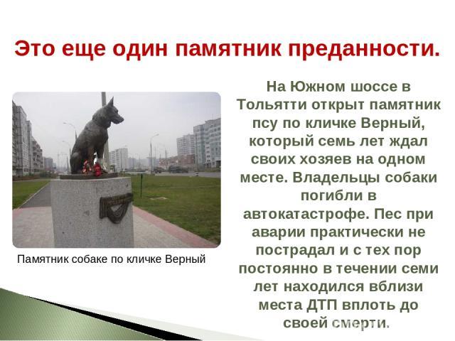 На Южном шоссе в Тольятти открыт памятник псу по кличке Верный, который семь лет ждал своих хозяев на одном месте. Владельцы собаки погибли в автокатастрофе. Пес при аварии практически не пострадал и с тех пор постоянно в течении семи лет находился …