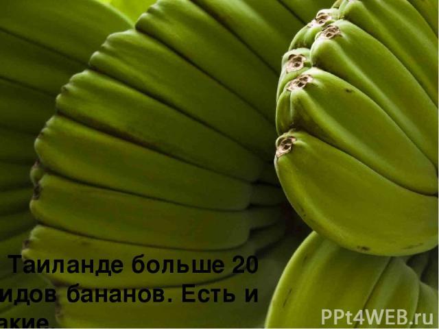 В Таиланде больше 20 видов бананов. Есть и такие.