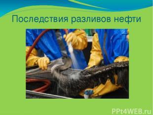 Последствия разливов нефти