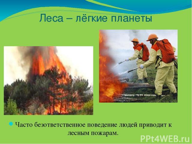 Леса – лёгкие планеты Часто безответственное поведение людей приводит к лесным пожарам.