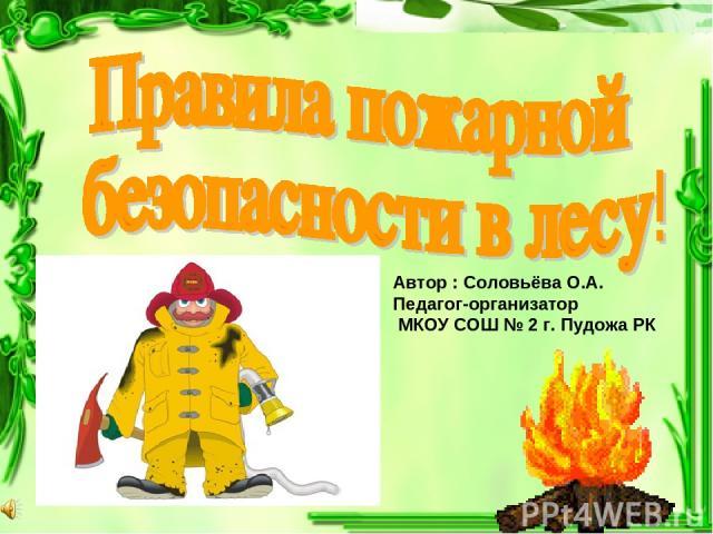 Автор : Соловьёва О.А. Педагог-организатор МКОУ СОШ № 2 г. Пудожа РК