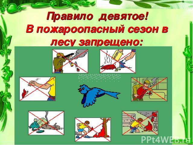 Правило девятое! В пожароопасный сезон в лесу запрещено: