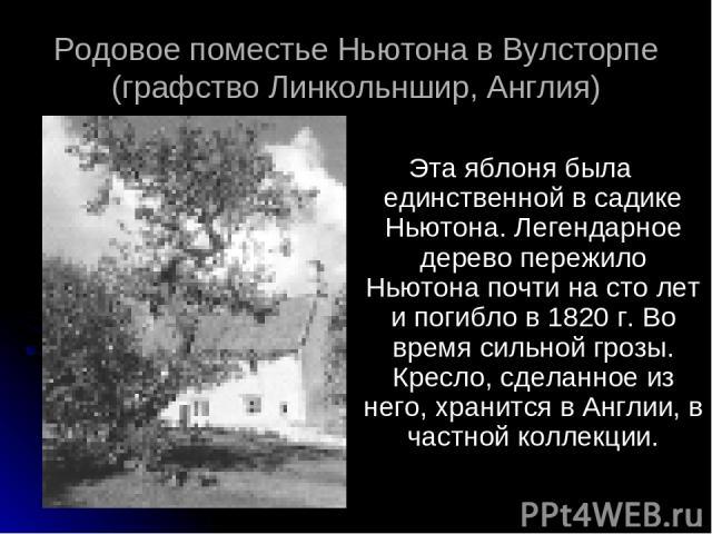 Эта яблоня была единственной в садике Ньютона. Легендарное дерево пережило Ньютона почти на сто лет и погибло в 1820 г. Во время сильной грозы. Кресло, сделанное из него, хранится в Англии, в частной коллекции. Родовое поместье Ньютона в Вулсторпе (…