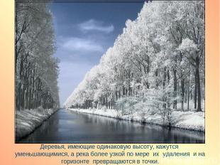 Деревья, имеющие одинаковую высоту, кажутся уменьшающимися, а река более узкой п