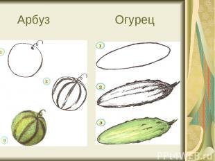 Арбуз Огурец