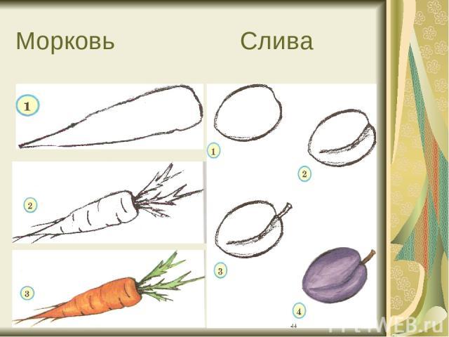 Морковь Слива