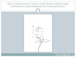 Высоту головы делим на 3,5 части. Таким образом получаем: линию основания носа,