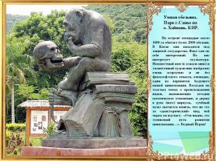 Умная обезьяна. Парк г.Саньо на о. Хайнань. КНР. На острове площадью около 1000