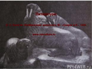 Литература: В. А. Ватагин. Изображение животного, М.: «Сварог и К», 1999. www.ro