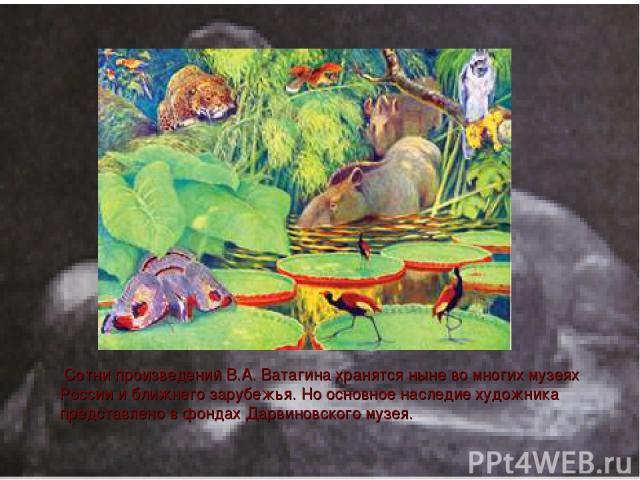 Сотни произведений В.А. Ватагина хранятся ныне во многих музеях России и ближнего зарубежья. Но основное наследие художника представлено в фондах Дарвиновского музея.