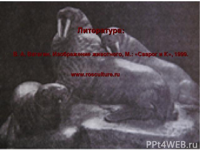 Литература: В. А. Ватагин. Изображение животного, М.: «Сварог и К», 1999. www.rosculture.ru
