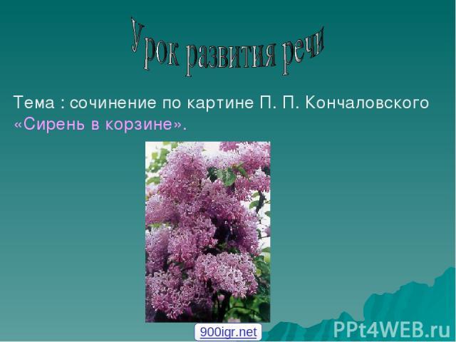 Тема : сочинение по картине П. П. Кончаловского «Сирень в корзине». 900igr.net