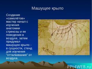 Создание «самолётов» мастер начал с изучения анатомии стрекозы и ее поведения в