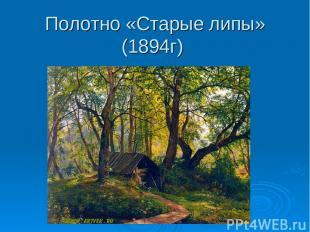 Полотно «Старые липы» (1894г)