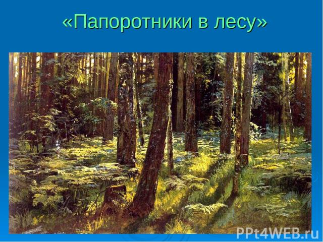 «Папоротники в лесу»