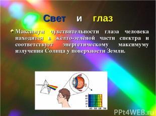 Свет и глаз Максимум чувствительности глаза человека находится в жёлто-зелёной ч
