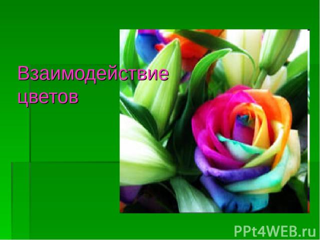 Взаимодействие цветов
