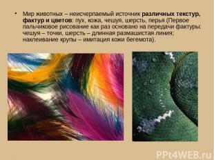 Мир животных – неисчерпаемый источник различных текстур, фактур и цветов: пух, к