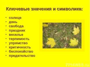 Ключевые значения и символика: солнце день свобода праздник веселье терпимость у