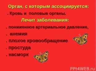 Julia Tishinskaja Орган, с которым ассоциируется: . Кровь и половые органы. Лечи