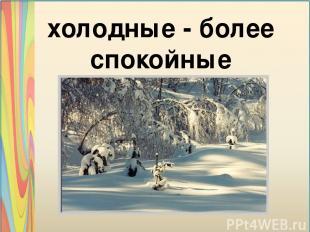 холодные - более спокойные