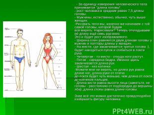 """- За единицу измерения человеческого тела принимается """"длина головы"""". - рост чел"""