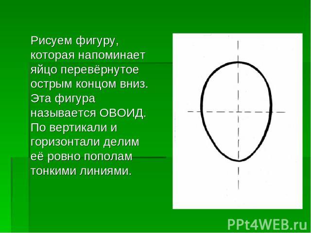 Рисуем фигуру, которая напоминает яйцо перевёрнутое острым концом вниз. Эта фигура называется ОВОИД. По вертикали и горизонтали делим её ровно пополам тонкими линиями.