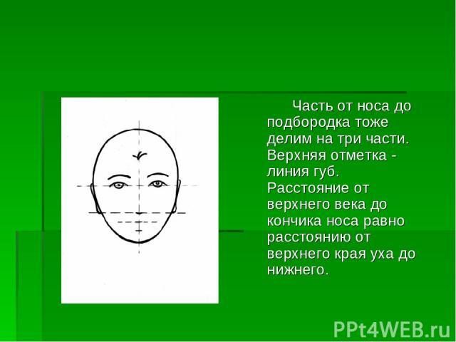 Часть от носа до подбородка тоже делим на три части. Верхняя отметка - линия губ. Расстояние от верхнего века до кончика носа равно расстоянию от верхнего края уха до нижнего.
