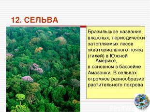 12. СЕЛЬВА Бразильское название влажных, периодически затопляемых лесов экватори
