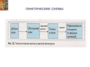 генетические схемы