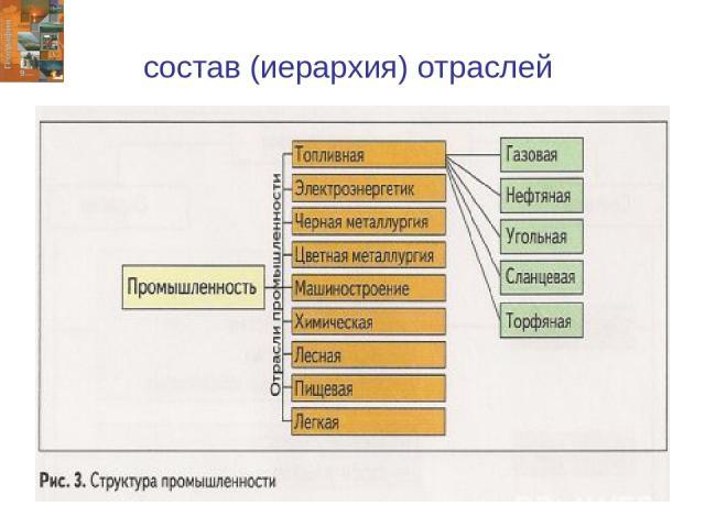 состав (иерархия) отраслей