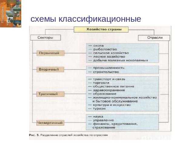 схемы классификационные