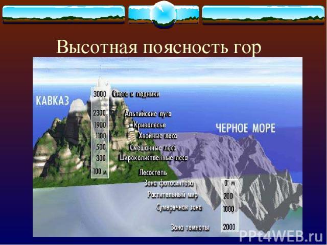 Высотная поясность гор