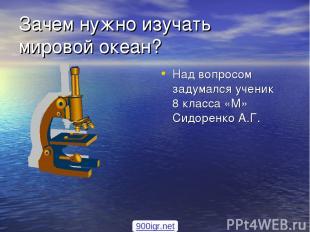 Зачем нужно изучать мировой океан? Над вопросом задумался ученик 8 класса «М» Си
