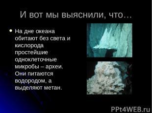 И вот мы выяснили, что… На дне океана обитают без света и кислорода простейшие о