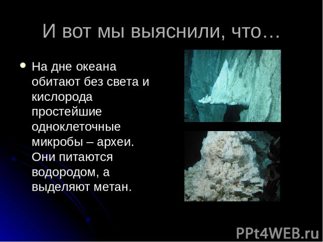 И вот мы выяснили, что… На дне океана обитают без света и кислорода простейшие одноклеточные микробы – археи. Они питаются водородом, а выделяют метан.
