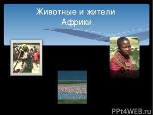 Животные и жители Африки