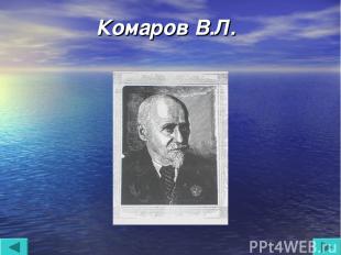Комаров В.Л.