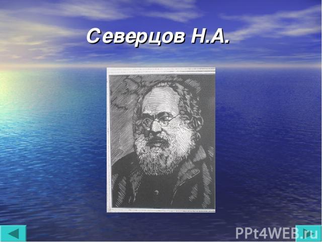 Северцов Н.А.