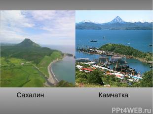 Сахалин Камчатка