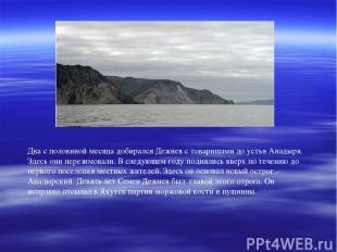 Два с половиной месяца добирался Дежнев с товарищами до устья Анадыря. Здесь они
