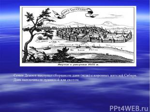 Семен Дежнев выступал сборщиком дани (ясак) с коренных жителей Сибири. Дань выпл