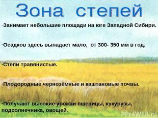 Занимает небольшие площади на юге Западной Сибири. Осадков здесь выпадает мало,