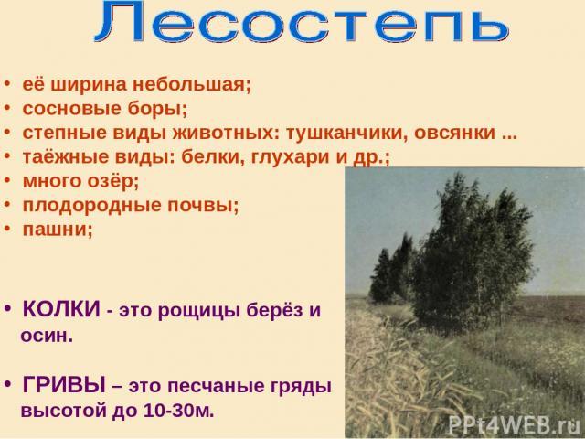 её ширина небольшая; сосновые боры; степные виды животных: тушканчики, овсянки ... таёжные виды: белки, глухари и др.; много озёр; плодородные почвы; пашни; КОЛКИ - это рощицы берёз и осин. ГРИВЫ – это песчаные гряды высотой до 10-30м.