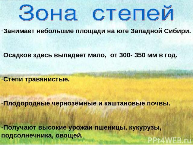 Занимает небольшие площади на юге Западной Сибири. Осадков здесь выпадает мало, от 300- 350 мм в год. Степи травянистые. Плодородные чернозёмные и каштановые почвы. Получают высокие урожаи пшеницы, кукурузы, подсолнечника, овощей.
