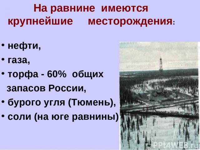 На равнине имеются крупнейшие месторождения: нефти, газа, торфа - 60% общих запасов России, бурого угля (Тюмень), соли (на юге равнины),