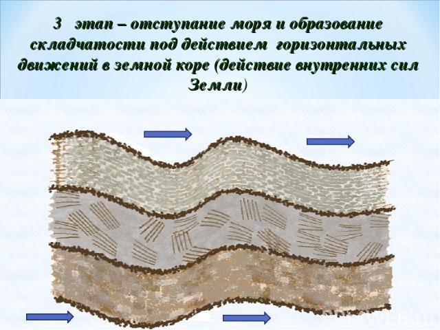 3 этап – отступание моря и образование складчатости под действием горизонтальных движений в земной коре (действие внутренних сил Земли)