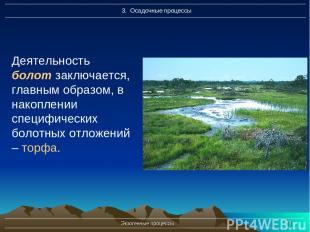 Экзогенные процессы * Деятельность болот заключается, главным образом, в накопле