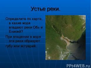 Устье реки. Определите по карте, в какие моря впадают реки Обь и Енисей? При впа