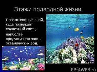 Этажи подводной жизни. Поверхностный слой, куда проникает солнечный свет ,- наиб